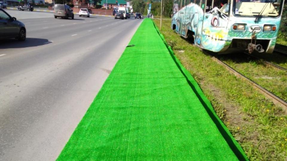 Украсили ко дню города: ковры вместо газонов постелили в Челябинской области