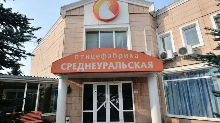 Правительство Свердловской области отказалось поддерживать птицефабрику Косилова в Среднеуральске