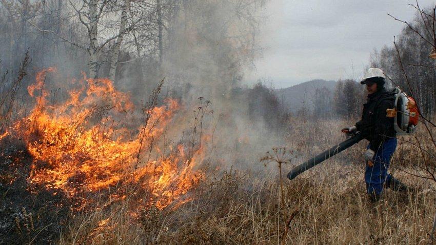 Пожароопасный сезон в этом году в Челябинской области может начаться раньше обычного