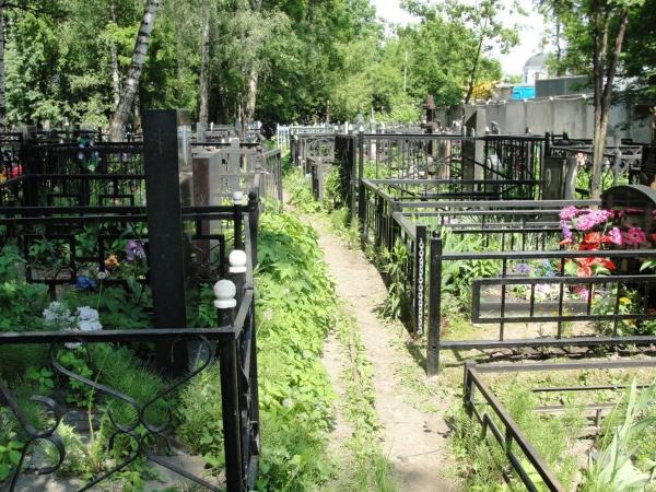 Кто поможет найти давно умерших родственников
