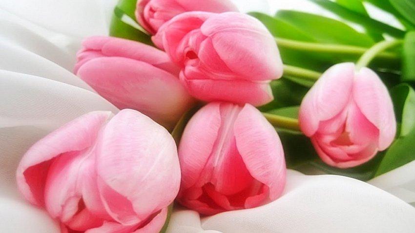 Из-за пандемии коронавируса в Челябинской области возник дефицит живых цветов