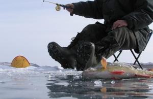 На южноуральца завели уголовное дело за ловлю рыбы в озере