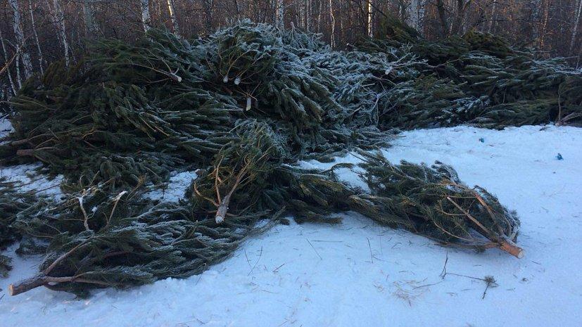 НаЮжном Урале предпринимателей, бросивших елки, внесут вчерный список