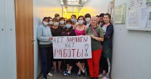 Работники «Чурилово» готовятся к забастовке из-за задержки зарплат