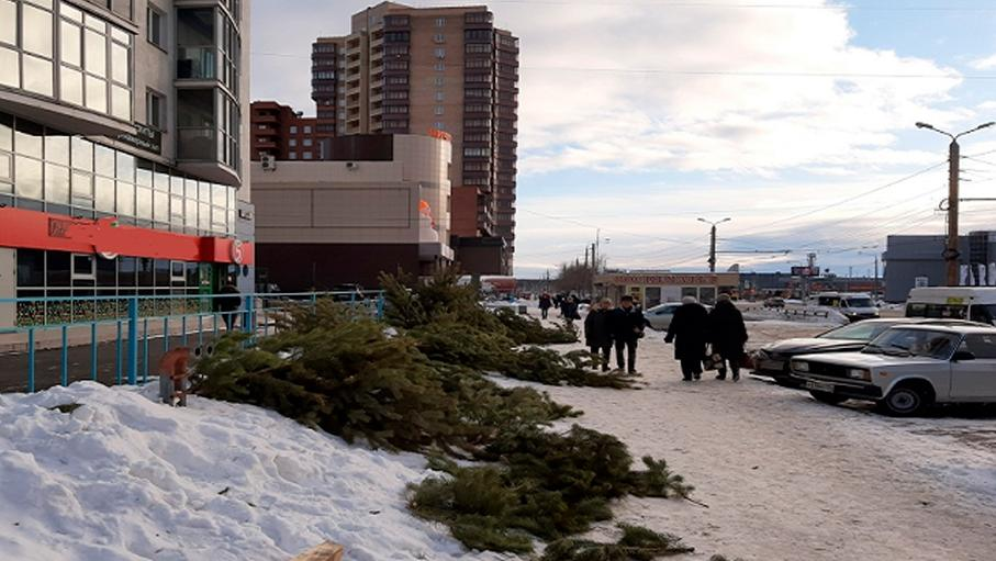 После праздников продавцы бросили елки на улицах Челябинска