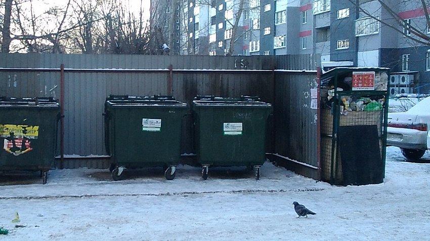 В Челябинске оставят часть контейнеров для раздельного сбора отходов
