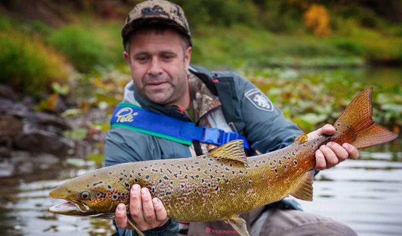Рыболовам и охотникам Южного Урала предлагают специальные цены на авиабилеты