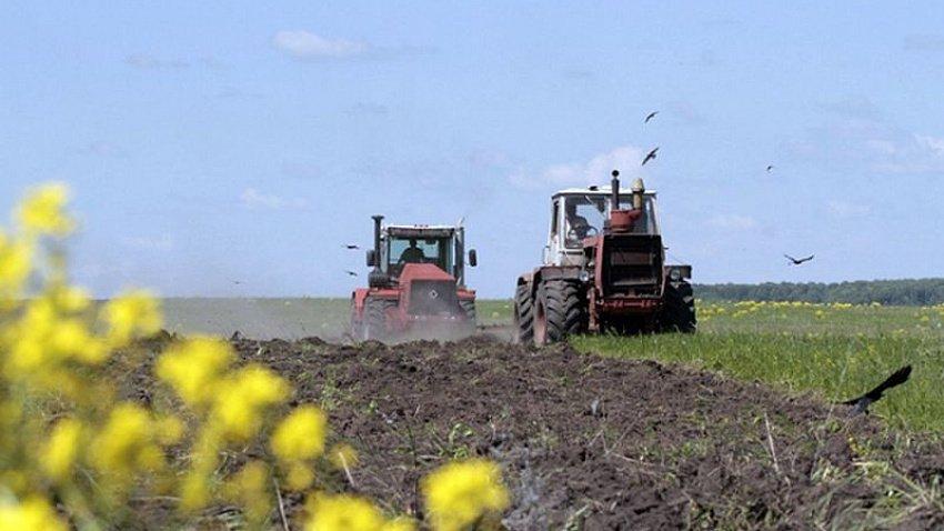 Челябинская область является лидером по сельскому хозяйству в Уральском федеральном округе