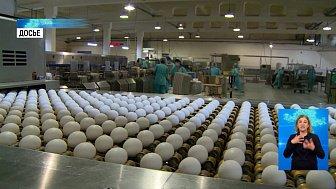 За год яйца подорожали на 26 %