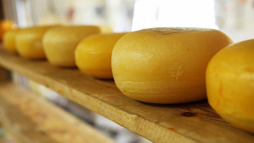 Южноуральские производители оценили расходы на маркировку сыра и мороженого