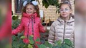 Школьницы изКыштыма вырастили для города дубовую рощицу