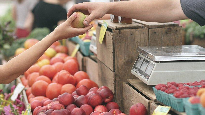 В Челябинской области выявлено более 1,5 тыс. тонн зараженных растительных продуктов
