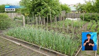 В Копейске отдельно платят за полив огорода