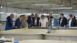 В Челябинской области создали ассоциацию рыбоводных хозяйств