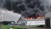 При пожаре наптицефабрике вРощино погибли более 200тысяч кур