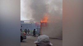 Птицефабрика в огне: видео пожара в Рощино