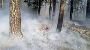 «Обстановка остается напряженной»: южноуральцам напомнили опожароопасном сезоне влесах