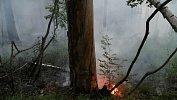 В Челябинской области вспыхнул пожар рядом снацпарком «Таганай»