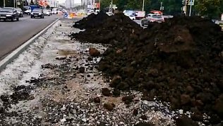 Челябинцы на видео выразили недовольство посадкой растений в бетон на Комсомольском проспекте