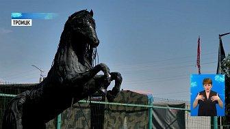 Житель Троицка сделал коня из шин