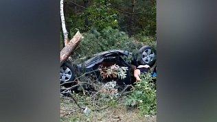 Между Златоустом и Миассом перевернувшийся автомобиль врезался в дерево