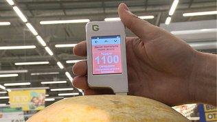 Арбузы и дыни в Челябинске проверили на содержание нитратов