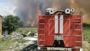 В Карталинском районе загорелся лес