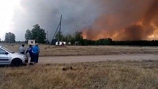 Лесные пожары угрожают четырем населенным пунктам на юге Челябинской области