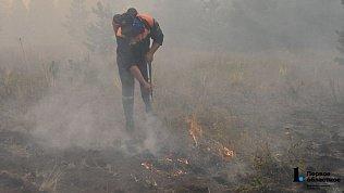 МЧС: «В лесных пожарах на Южном Урале никто непропадал!»