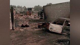 Появились кадры последствий лесных пожаров на юге Челябинской области