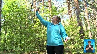 Что делать, если потерялся в лесу?