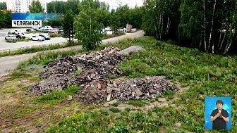 В лес на Северо-Западе вывозят кучи асфальта
