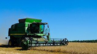 Челябинская область вошла втоп‑5 регионов пообъему федеральных субсидий аграриям