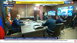 Алексей Текслер доложил Владимиру Путину о помощи пострадавшим от лесных пожаров южноуральцам