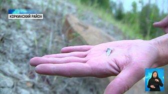 Геологи обнаружили зубы древних акул