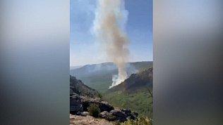 В Башкирии 750 детей эвакуировали из детского лагеря из-за лесного пожара
