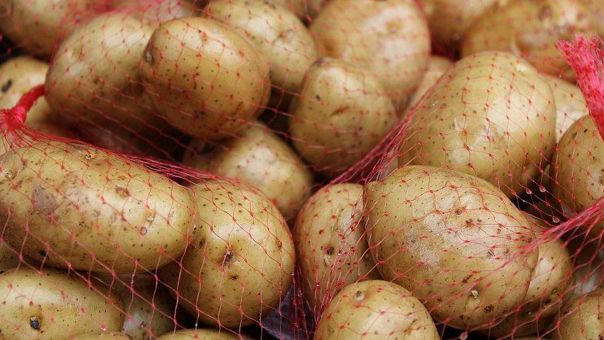На среднюю зарплату жители Челябинской области могут купить больше тонны картофеля