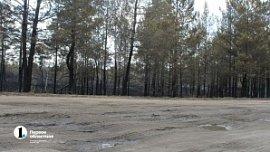 Правительство России направит 480 млн рублей на строительство дороги Париж – Джабык