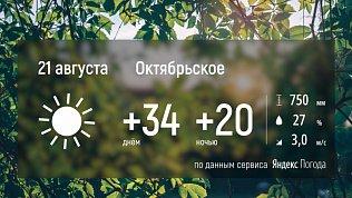 В Челябинской области уже несколько дней стоит аномально жаркая погода