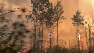 Пластовский район охватил крупный лесной пожар