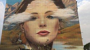Никас Сафронов оценит граффити-репродукцию своей картины «Пик красоты» вЮжноуральске