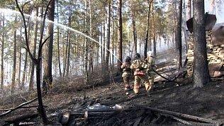 Съемочная группа телеканала ОТВ побывала в эпицентре лесного пожара в Миассе