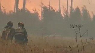 Пожарные попали в огненное кольцо в Мордовском заповеднике