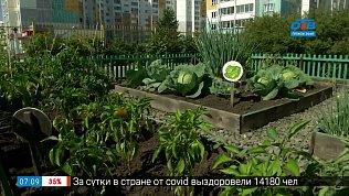 Челябинск — город цветущий!