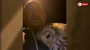 Эльбрус Нигматуллин снял видео о спасении совы