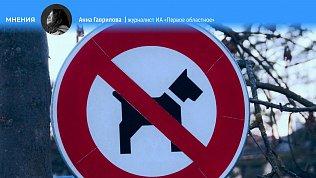 «Выгул запрещен»: зачем Челябинску нужны площадки длясобак?