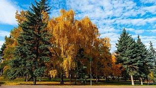 В Челябинской области ожидается малооблачная погода безосадков
