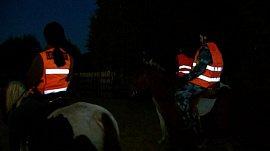 Поисковый отряд «ЛизаАлерт» организовало конное направление