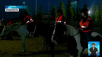 Поисковики из «ЛизаАлерт» пересядут на лошадей