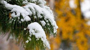 В Челябинской области прогнозируют снег сдождем иштормовой ветер